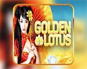 Golden Lotus RT
